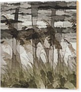 Beach Grasses Wood Print