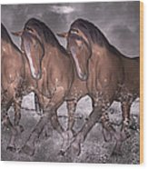 Beach Horse Trio Night March Wood Print by Betsy Knapp