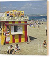 Beach Hut Wood Print by David Davies