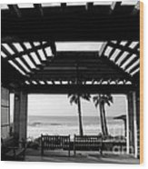 Beach In Del Mar California Wood Print