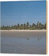 Beach In Goa Wood Print