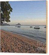 Beach In Mauritius  Wood Print