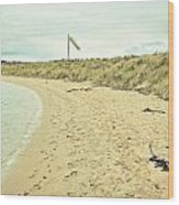 Beach In Scotland Wood Print