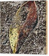 Beach Leaf Wood Print