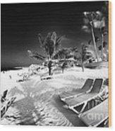 Beach Lounging Wood Print