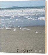 Beach Love Wood Print by Linda Woods