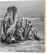 Beach Monster 2 - Outer Banks Bw Wood Print