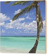 Beach Of A Tropical Island Wood Print