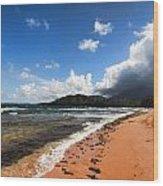 Beach Of Color Wood Print