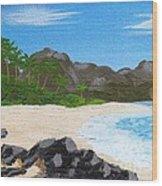Beach On Helicopter Island Wood Print