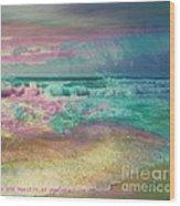 Beach  Overcast Wood Print