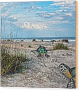 Beach Pals Wood Print by Betsy Knapp