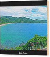 Beach Panorama - Brasil Wood Print