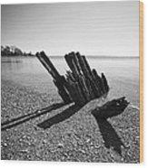 Beach Pilings Wood Print