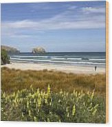 Beach Scene Otago Peninsula South Island New Zealand Wood Print