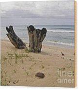 Beach Scenery Wood Print