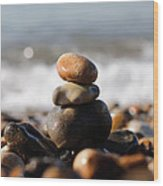Beach Stones Wood Print by Ivelin Donchev
