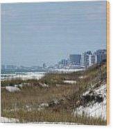 Beach To City Wood Print