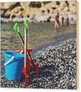 Beach Toys Wood Print by Luis Alvarenga