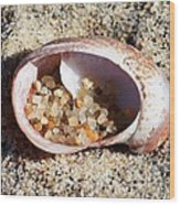 Beach Treasure Wood Print by Carol Groenen