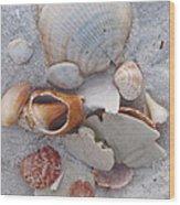 Beach Treasures 2 Wood Print