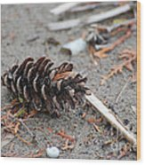 Beach Treasures Wood Print