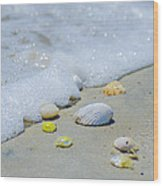 Beach Treasures Wood Print