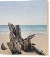 Beach Trunk Wood Print