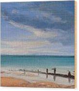 Beach View 1 Wood Print