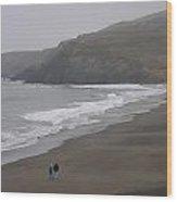 Beach Walkers Wood Print