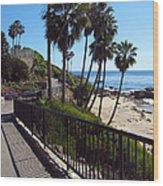 Beach Walkway Wood Print