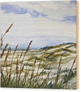Beach Watercolor 3-19-12 Julianne Felton Wood Print