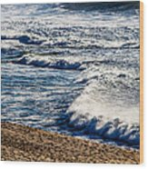 Beaches And Birds Wood Print