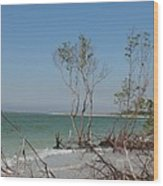 Fort De Soto Beachview Wood Print