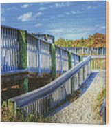 Beachwalk Wood Print