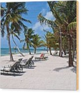 Beachy Belize Wood Print
