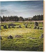 Beaghmore Stone Circles Wood Print