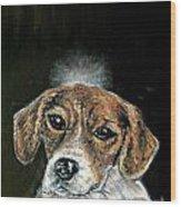 Beagle Angel Wood Print by Jay  Schmetz