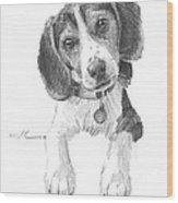 Beagle Puppy Pencil Portrait Wood Print