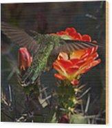 Beak Deep In Nectar  Wood Print