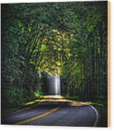 Beam Me Up Great Smoky Mountains Tennessee Mountains Art Wood Print
