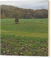 Beantown Meadow Wood Print