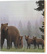 Bear And Cubs Wood Print