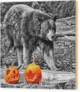 Bear And Pumpkins Too Wood Print