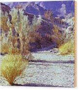 Bear Creek Trail II Wood Print