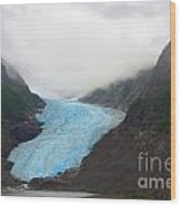 Bear Glacier Wood Print