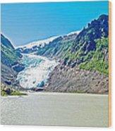 Bear Glacier Near Stewart-british Columbia  Wood Print