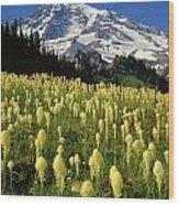 Bear Grass At Mt. Rainier - V Wood Print