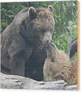 Bear Kisses Wood Print