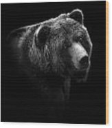 Portrait Of Bear In Black And White Wood Print